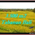 Beautiful PROPERTY Tabanan Selemadeg 3,500 m2 LAND FOR SALE TJTB259