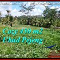 Ubud Pejeng BALI LAND FOR SALE TJUB535