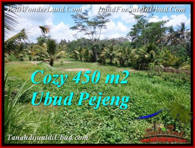 Exotic PROPERTY 450 m2 LAND FOR SALE IN Ubud Pejeng TJUB535