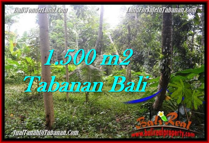 Magnificent PROPERTY TABANAN LAND FOR SALE TJTB279