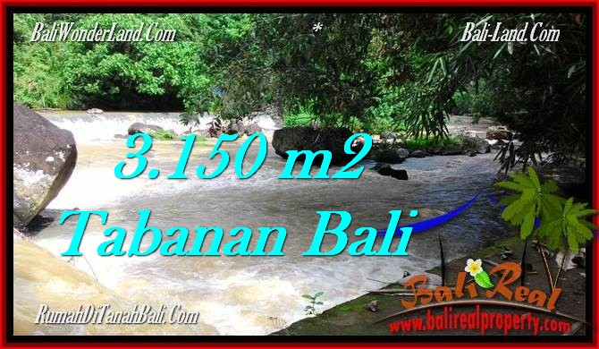 Exotic PROPERTY 3,150 m2 LAND IN Tabanan Selemadeg FOR SALE TJTB282