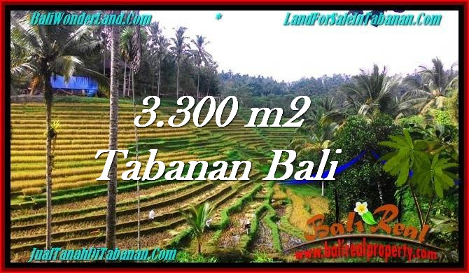 Beautiful PROPERTY 3,300 m2 LAND SALE IN Tabanan Selemadeg TJTB274