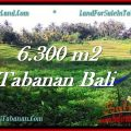 Beautiful 6,300 m2 LAND SALE IN TABANAN BALI TJTB275