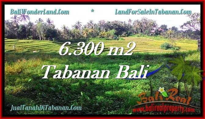 Affordable 6,300 m2 LAND FOR SALE IN TABANAN BALI TJTB275