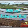 Affordable LAND FOR SALE IN TABANAN TJTB308